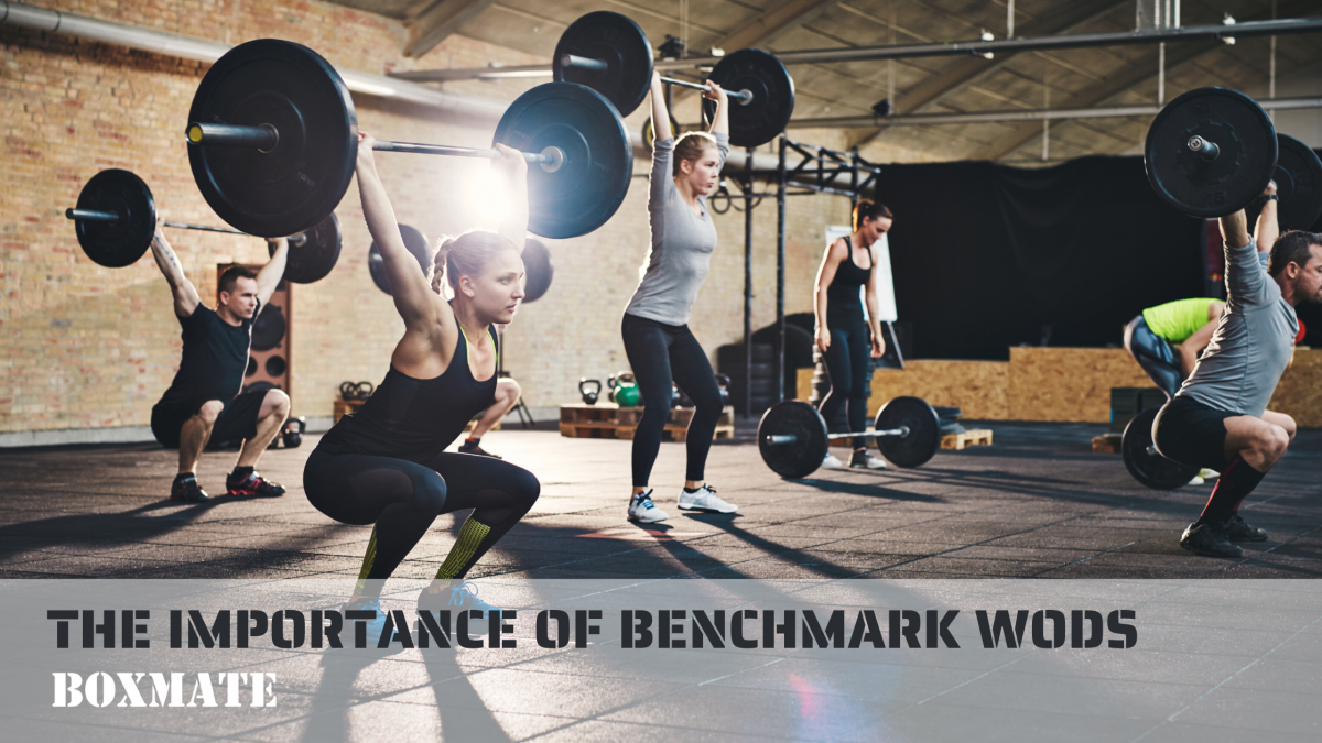 Why Do We Do Benchmark WODs?